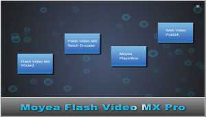 Moyea Flash Video MX Pro