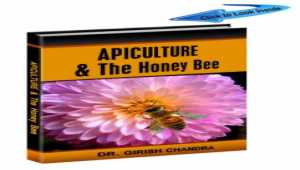 Apiculture and The Honey Bee