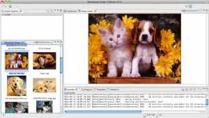 Newsgroup Image Collector 2013 for mac