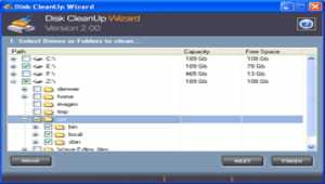 Disk CleanUp Wizard