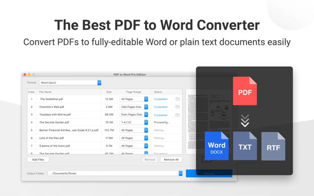 PDF to Word Pro Edition
