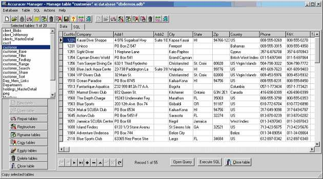 Accuracer Database System VCL