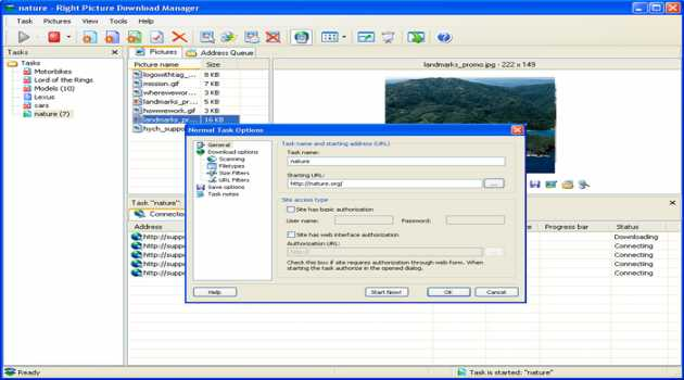 Right Picture Download Manager