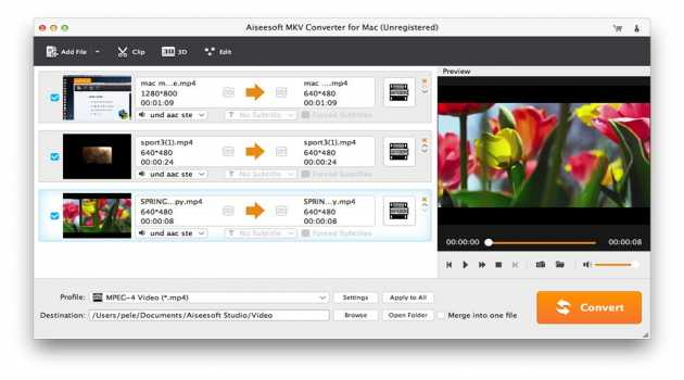 Aiseesoft MKV Converter for Mac