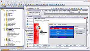 EMS SQL Manager for Oracle Freeware