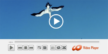 HD Video Media Player for Mac OSX
