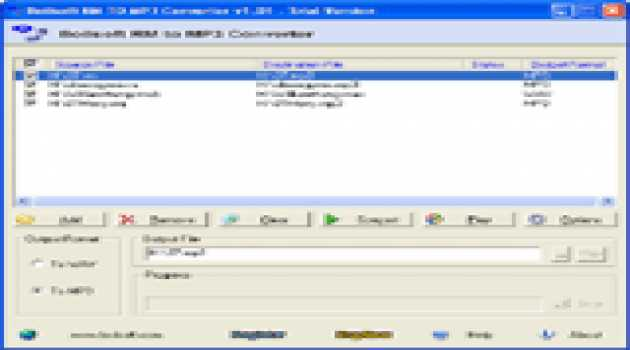 RM to MP3 Converter